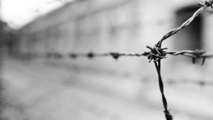 Barbed wire at the Auschwitz concentration camp By Luuk de Kok